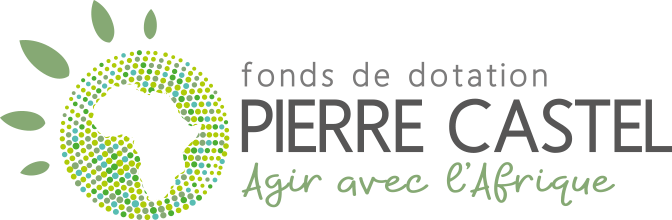 logo-fonds-dotation-pierre-castel
